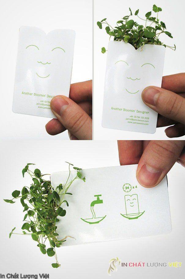 card visit dùng giấy phân hủy sinh học chứa hạt giống