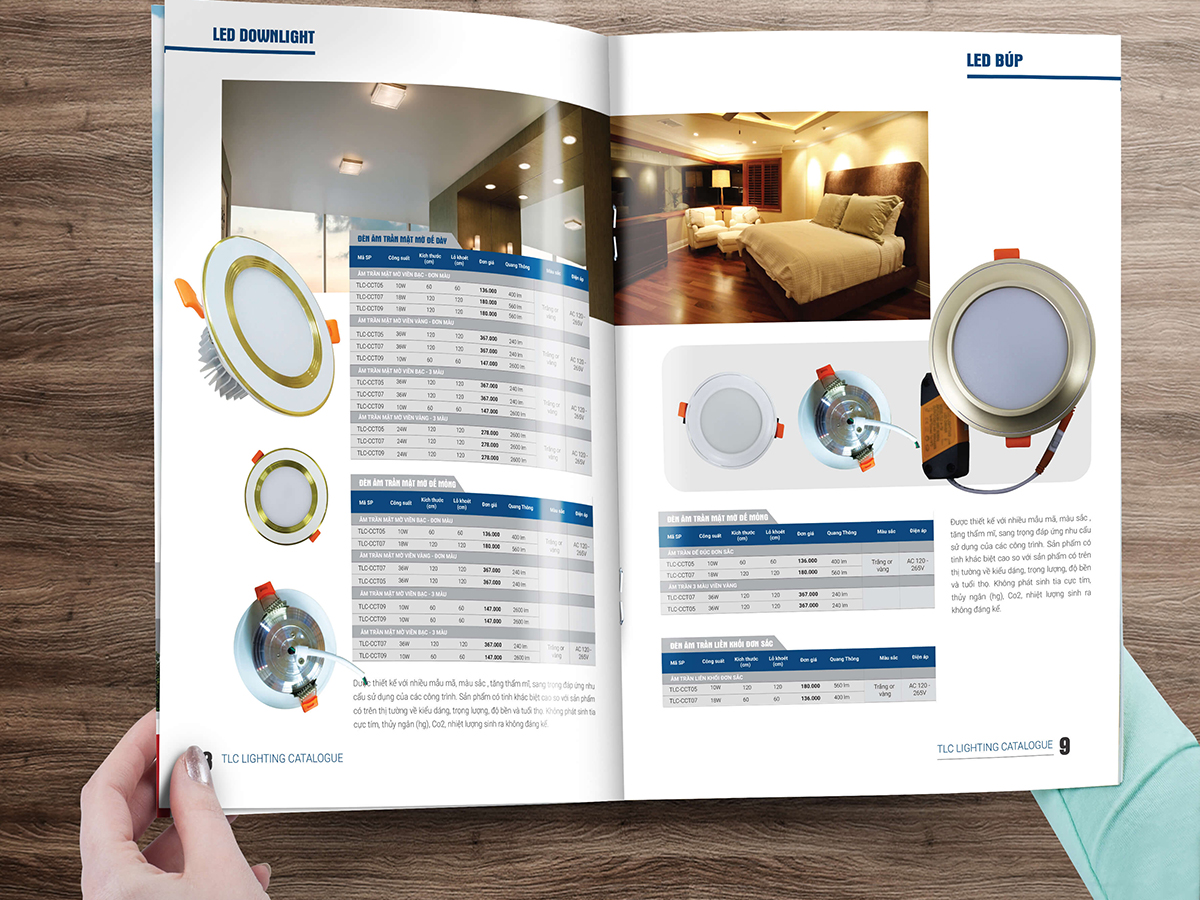 in catalogue nhanh tai hcm