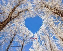 ánh sáng hạnh phúc lan ra từ trái tim !
